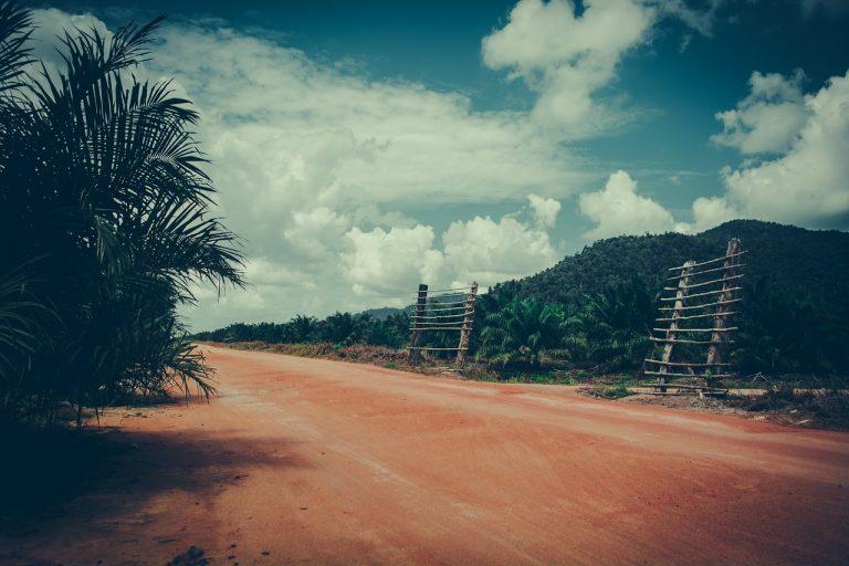 Perampasan Hak Atas Tanah, Sebuah Krisis Kemanusiaan dan Ekologi
